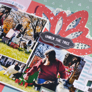 Christmas Card Photo Antics